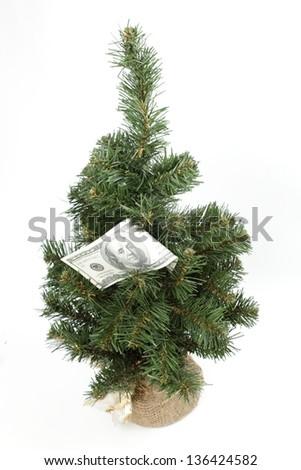 Dollar banknote hanging on christmas tree - stock photo