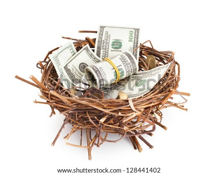Dollar bills and coins in a birds nest isolated on white background - stock photo