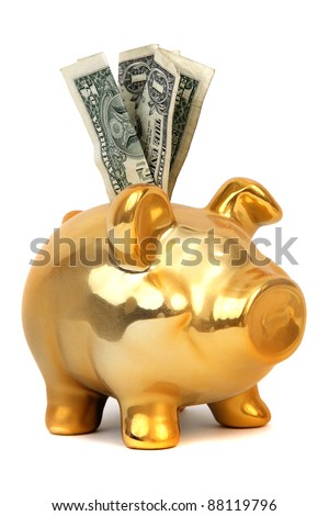 dollar notes and piggy bank - stock photo