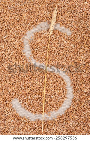 Dollar symbol made from wheat grain - stock photo