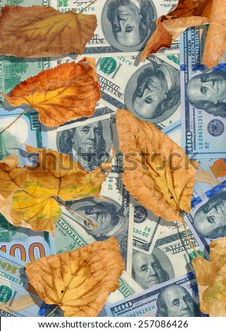 dollars and autumn leaves closeup - stock photo