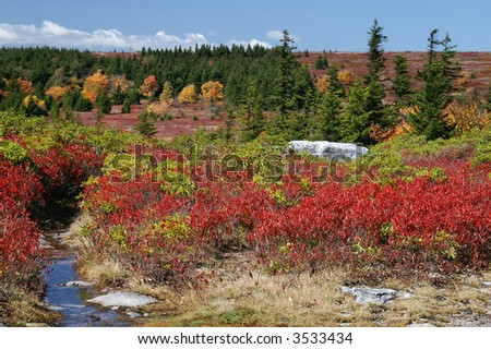 Dolly Sods West Virginia Autumn Landscape Horizontal 1 - stock photo