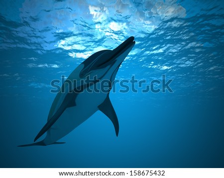 Dolphin under water  - stock photo