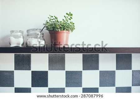 Domestic plant in a pot and jars on the kitchen shelf on the wall, close-up - stock photo