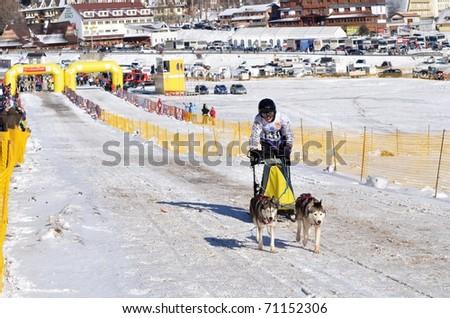 DONOVALY, SLOVAKIA - FEBRUARY 12: Fourmier Jason of France participating in the 10th World sleddog racing Championship F.I.S.T.C. February 12, 2011 in Donovaly, Slovakia - stock photo