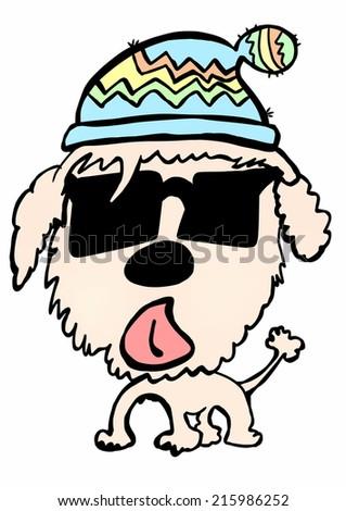 doodle poodle - stock photo