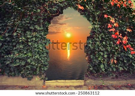 door to a vineyard overlooking the sea. vintage photo - stock photo