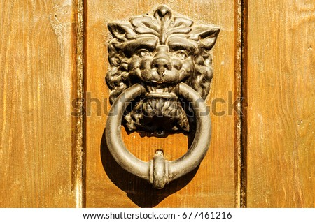 Door with brass knocker in the shape of a lion's head, beautiful entrance to the house, decor