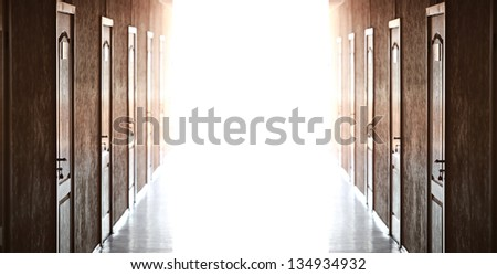 doors of brown color on a white background