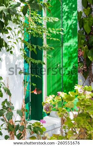 Dooryard from a small hostel in Paleochora on Crete. Backpacker use this hostel as starting point on the way to island Gavdos or to hike in the Lefka Ori - stock photo