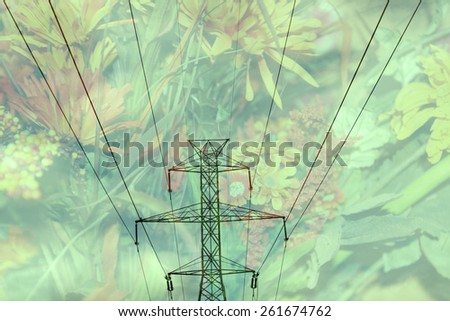Double exposure high voltage power lines with flower background - Energy and environment concept - stock photo