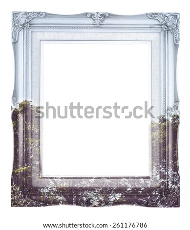 Double exposure of Vintage photo frame and tree landscape view isolated on white background, Double Exposure concept - stock photo