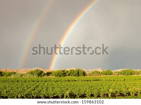 Double rainbow over vineyard in Northern Cape South Africa