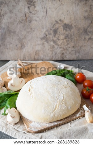 Dough for pizza - stock photo