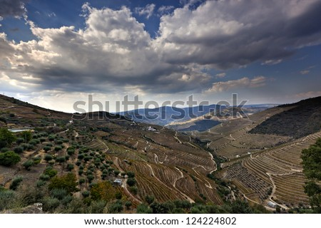 Douro Vineyard, Portugal, Europe - stock photo
