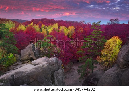 Autumn Scene Stock Photos Images Amp Pictures Shutterstock