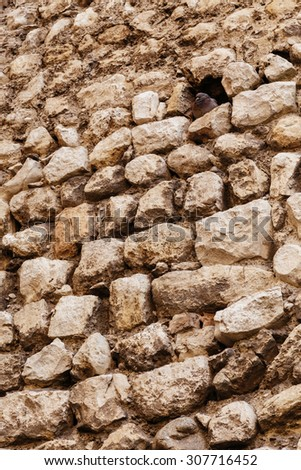 Dove in the stone wall. - stock photo