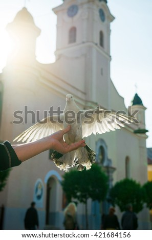Dove on man's hand against the church - stock photo