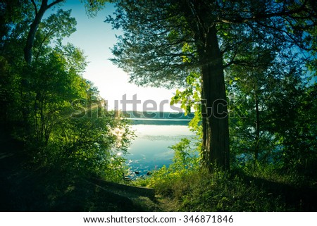 Down at the lake at the golden hour with summer tree leaves - stock photo