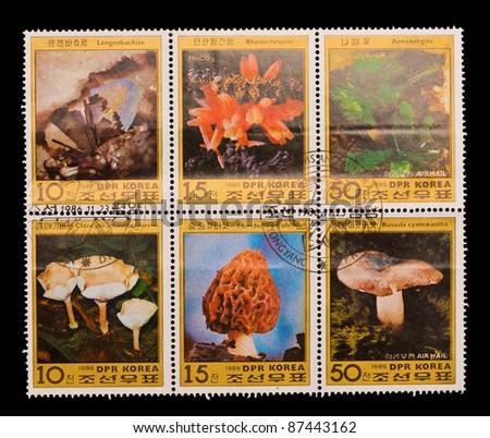 DPR KOREA - CIRCA 1986: A stamp printed in the DPR KOREA, shows Various kinds of mushrooms,  circa 1986 - stock photo