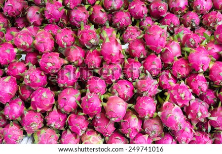 Dragon fruit , tropical fruit displayed at Vinh Long fruit market, Mekong delta. The majority of Vietnam's fruits come from the many orchards of the Mekong Delta