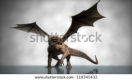 dragon in fog - stock photo
