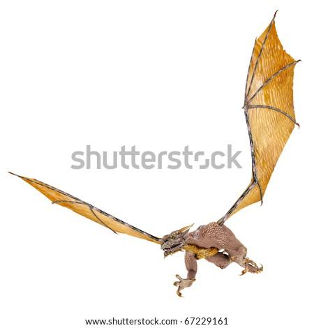 dragon snatch - stock photo