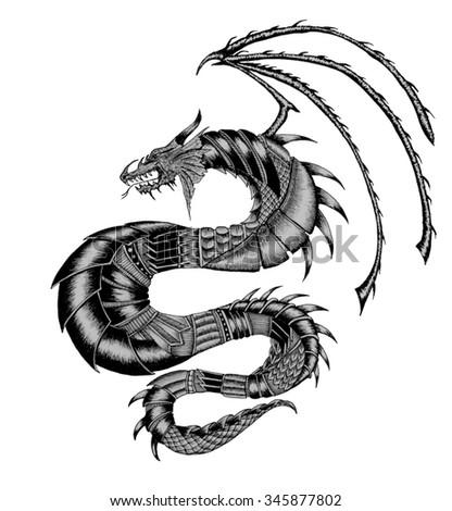 Dragon Tattoo Illustration - stock photo