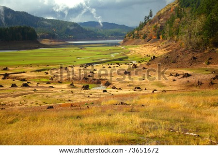Drained reservoir reveals the stumps from a prior forest - stock photo