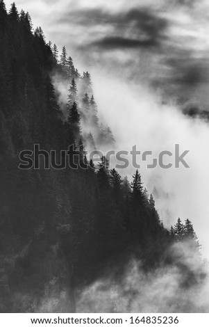 Dramatic Black and White Mountains Forests Fog Fjords Seward Alaska - stock photo