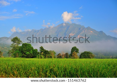 Dramatic clouds with mountain and tree  - stock photo