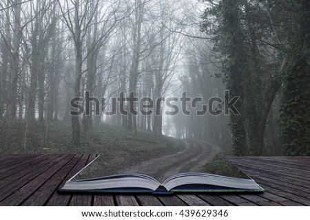 Dramatic moody foggy forest landscape Spring Autumn Fall. Montage of path on open book