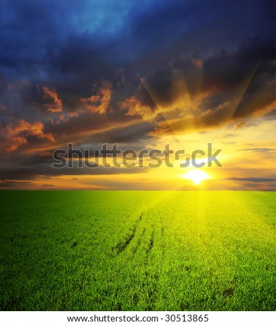 Dramatic sunset over field with grass