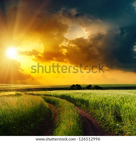 dramatic sunset over rural road in green field - stock photo