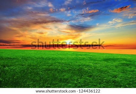 Dramatic sunset over the green field.  Summer landscape.