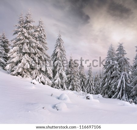 Dramatic winter landscape in the mountains - stock photo