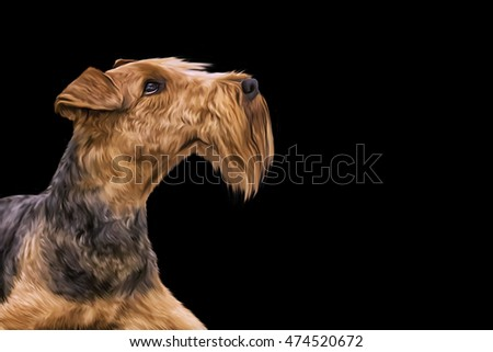 Drawing  Airedale Terrier portrait on a black background