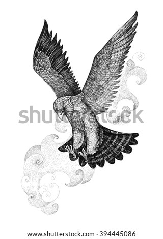 Drawing attacking hawk, falcon on a background of of stylized clouds