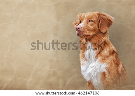 Tolling Agreement Template Nova Scotia Duck Tolling Retriever Dog