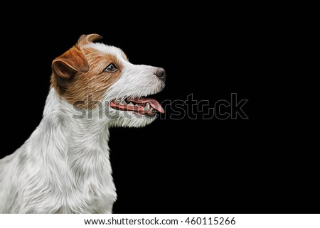 Drawing Dog Jack Russell Terrier portrait on a black background