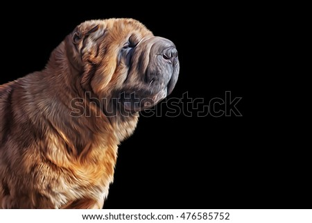 Drawing dog sharpeis portrait on a black background