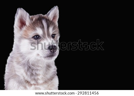 Drawing Husky dog, portrait on a black background
