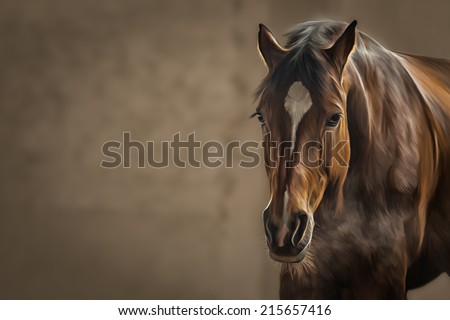 Drawing of a horse, portrait,on brown background - stock photo