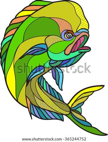 Drawing sketch style illustration of a dorado dolphin fish mahi-mahi jumping on isolated white background. - stock photo