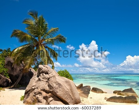 Dream beach with a big stones and palmtree, Seychelles, La Digue island
