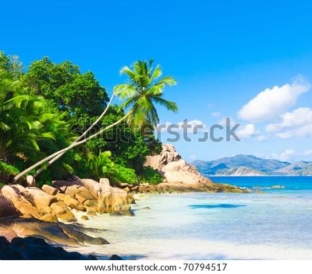 Dream Sea Coconut - stock photo