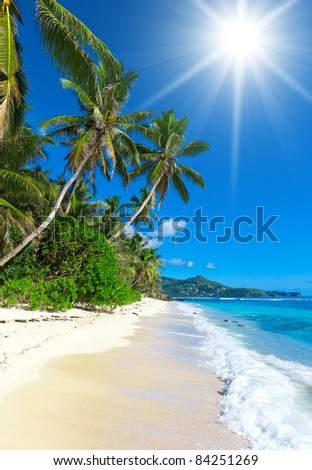Dream Summertime Broad Daylight - stock photo