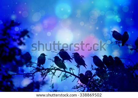 Dreamy scene with starling birds sitting on tree branches in the garden with bokeh lights, night time - stock photo