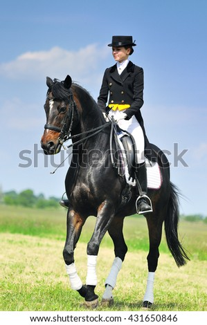 Dressage rider on bay horse in field - stock photo