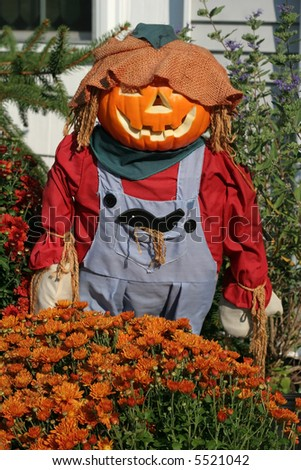 dressed scarecrow with pumpkin head - stock photo
